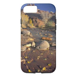 CAPITOL REEF NATIONAL PARK, UT, US, Cottonwood iPhone 8/7 Case