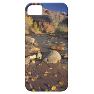 CAPITOL REEF NATIONAL PARK, UT, US, Cottonwood iPhone SE/5/5s Case