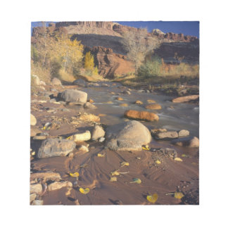 CAPITOL REEF NATIONAL PARK, UT, US, Cottonwood Notepad