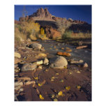 CAPITOL REEF NATIONAL PARK, UT, US, Cottonwood Poster