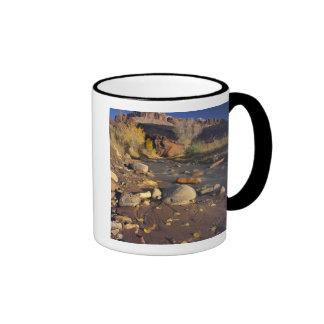 CAPITOL REEF NATIONAL PARK, UT, US, Cottonwood Ringer Mug