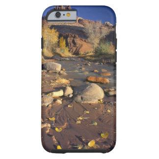 CAPITOL REEF NATIONAL PARK, UT, US, Cottonwood Tough iPhone 6 Case