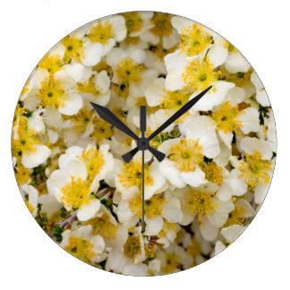 Capitol Reef National Park, Utah, USA 3 Large Clock