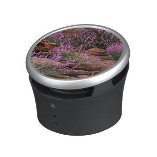 Capitol Reef National Park, Utah, USA Bluetooth Speaker