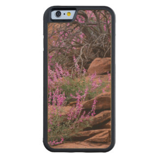 Capitol Reef National Park, Utah, USA Carved Maple iPhone 6 Bumper Case