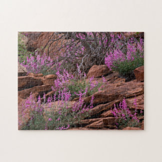 Capitol Reef National Park, Utah, USA Jigsaw Puzzle