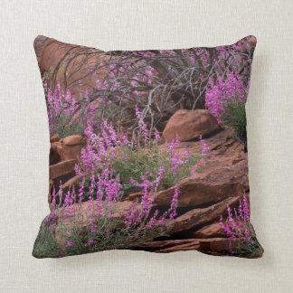 Capitol Reef National Park, Utah, USA Pillows