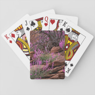 Capitol Reef National Park, Utah, USA Playing Cards