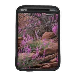 Capitol Reef National Park, Utah, USA Sleeve For iPad Mini