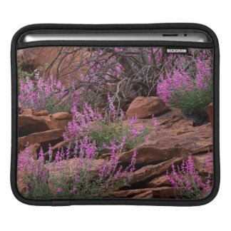 Capitol Reef National Park, Utah, USA Sleeves For iPads