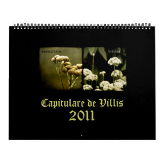 Capitulare de Villis 2011 Calendar