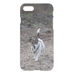 Uncommon iPhone 7 Clearly™ Deflector Case with Jack Russell Terrier Phone Cases design