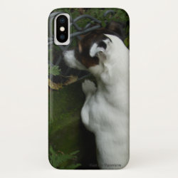 Case-Mate Barely There iPhone X Case with Jack Russell Terrier Phone Cases design