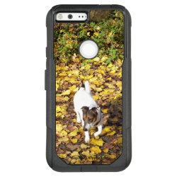 OtterBox Google XL 5.5' Pixel Commuter Case with Jack Russell Terrier Phone Cases design