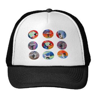 capoeira circles mma black belt cdo brazil mixed trucker hat