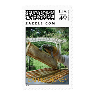 Capped Honey Postage Stamp