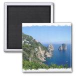 Capri 2 Inch Square Magnet