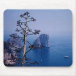 Capri Alfombrillas De Ratones