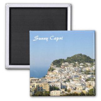 Capri island in Italy Refrigerator Magnets