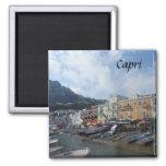 Capri, Italia Imán De Frigorifico