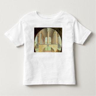 Capricho arquitectónico camisas