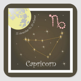 Capricorn 22 20 pegatina schaner december fin