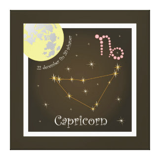 Capricorn 22 more december fin 20 of schaner canva stretched canvas prints