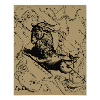 Capricorn Constellation Hevelius 1690 Dec22-Jan19 Custom Flyer