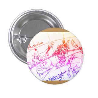 Capricorn Pin