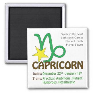 Capricorn Traits Magnet