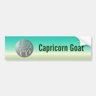 Capricorn Zodiac Star Sign Premium Silver Bumper Sticker