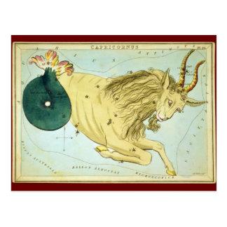 Capricornus Postcard