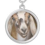 Caprine blanco de la raya de la gama de la cabra d collar personalizado