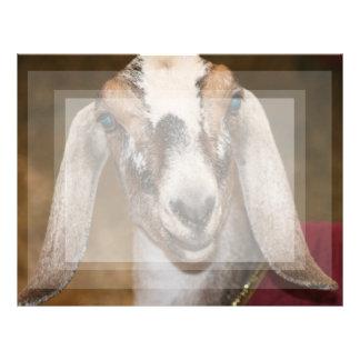 Caprine blanco de la raya de la gama de la cabra d membrete a diseño
