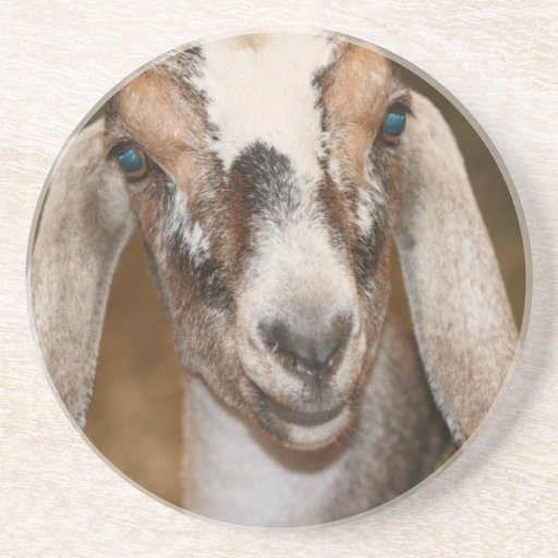 Caprine blanco de la raya de la gama de la cabra d posavasos personalizados