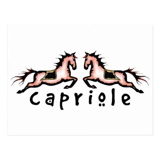 Capriole Dressage Ponies Postcard