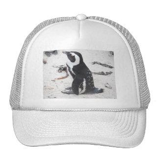 Caps De Pingüinos Trucker Hat