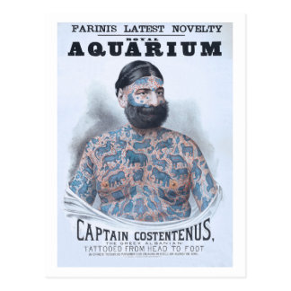 Captain Costentenus, tattoed from head to foot Postcard