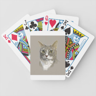 Captain domestic short hair cat bicycle playing cards