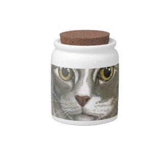 Captain domestic short hair cat candy dish