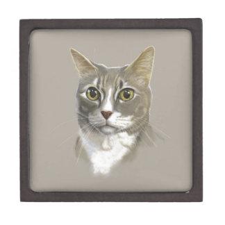 Captain domestic short hair cat keepsake box