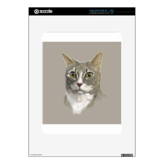 Captain domestic short hair cat skin for iPad