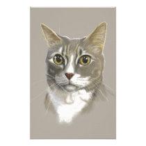 Captain domestic short hair cat stationery