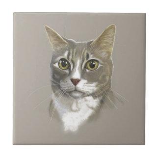 Captain domestic short hair cat tile