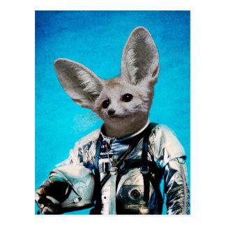 Captain fennec.jpg postcard