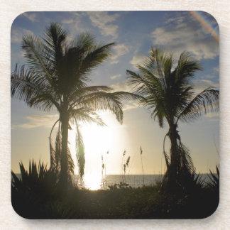 Captiva Island Coaster
