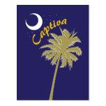 Captiva Island Night Postcard