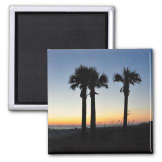 Captiva Island Palm Trees at Sunset Florida Magnet