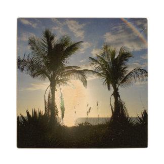 Captiva Island Wooden Coaster