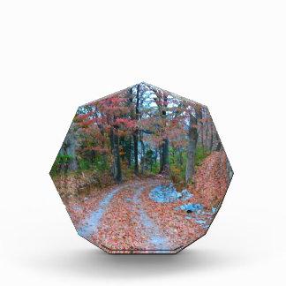 Captivating Autumn Afternoon Drive Acrylic Award